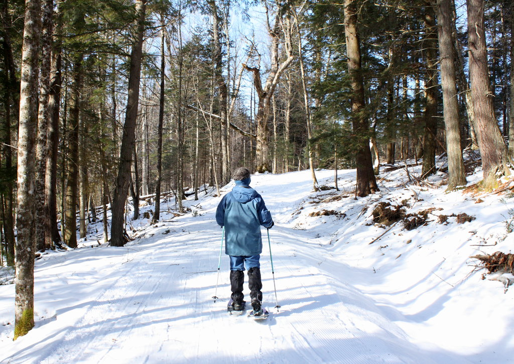 snowshoeing on the hardwick trails